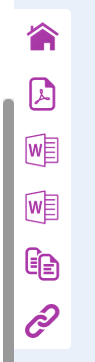 Screenshot of the Icons on left hand side of a report canvas.