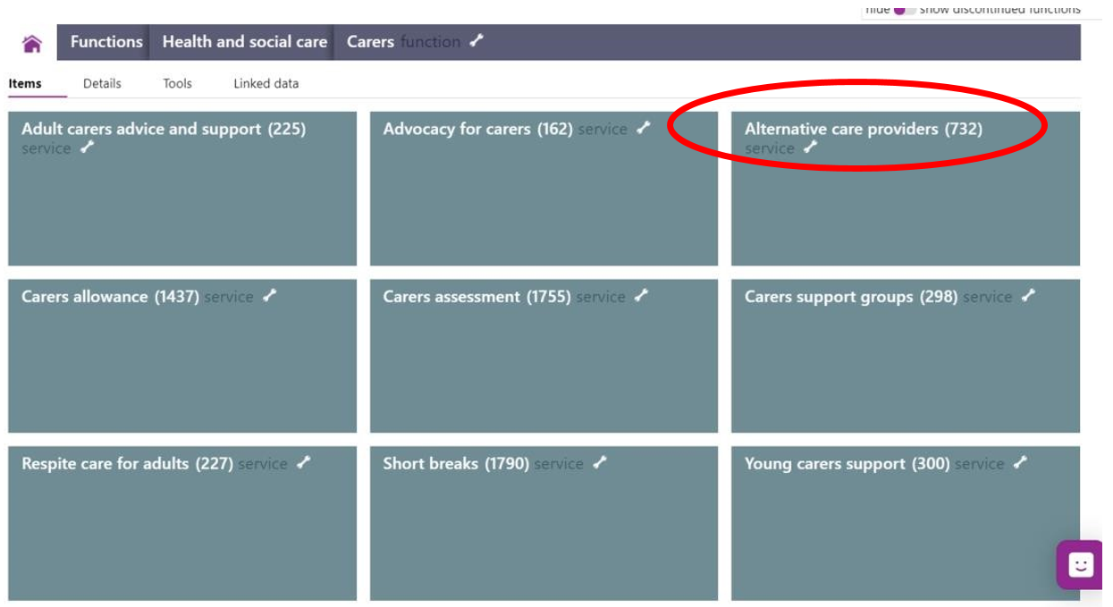 Screenshot highlighting the Alternative care providers area