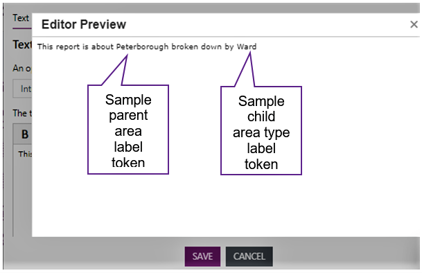 Screenshot showing the text in the Editor preview box.
